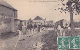 Auneau - Pompiers Faisant La Manoeuvre (tuyau Déroulé, La Pompe Est Là, Tambour Roule, Cheval Attend Sa Ration) 1908 - Auneau