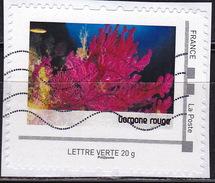 Personnalisé Personnalisés Corail Gergone Rouge - France