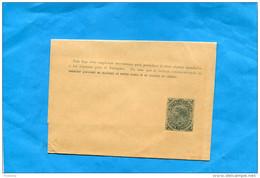 MARCOPHILIE -CHILI-bande Pour Journal Entier Postal-20 Cent République-Neuve Impec - Chile