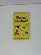 Whats Next, Charlie Brown? - Livres, BD, Revues