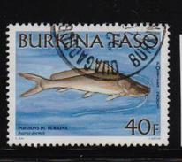 Burkina Faso 2001, Fish, Minr 1836, Vfu. Cv Undetermined - Burkina Faso (1984-...)