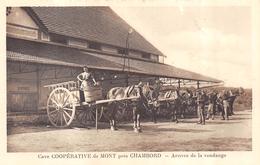 CPA 41 CAVE COOPERATIVE DE MONT PRES CHAMBORD ARRIVEE DE LA VENDANGE - Chambord