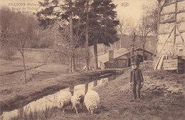 Framont - Route De Maissin Et Scierie (animée, Moutons, PIB, Edit Bodson-Labbé, 1927) - Paliseul