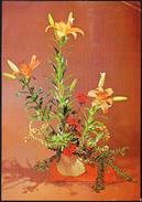 Germany Berlin 1981 / Flowers / Lilies - Flowers