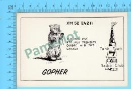 QSL- CB-  Gopher , Animal Rongeur  -  Pointe Aux Trembles Quebec- 2 Scans - CB