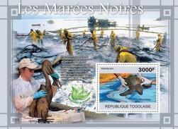 Togo 2011, Oil Spills, Birds, Turtle, BF
