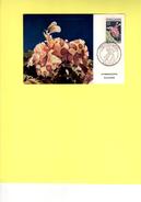 Maxi Carte Nouvelle-caledonie, Hymenocera Elegans FDC - Briefe U. Dokumente