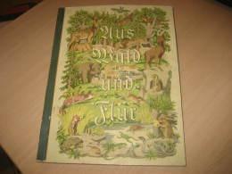 CIGARETTEN BILDERDIENST 125 Complete ALBUM Book Cards FAUNA German Language Period 1930's Aprox. 128 Pages. - Album & Cataloghi