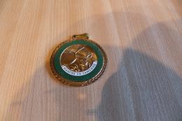 Belle Médaille De La Confrérie Du Matoufé Noblesse Oblige Marche En Famenne - Tourist