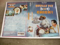 """Rare Film : """" Quelle Vie De Chien """" - Comedy"""