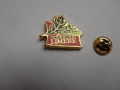 Superbe Pin's En Zamac , Golf Domaine Limére , Ardon , Loiret - Golf