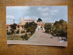 Algérie , Le Kreider , Avenue Des Casernes - Other Cities