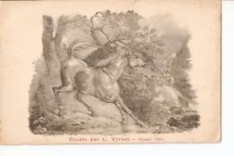 Postal 025138 : Etudes Par C. Vernet - Cheval Libre - Postales