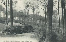 78, Yvelines, VELIZY, Forêt De Meudon, Une Coupe De Bois,Cabane De Bucheron,Personnages,Scan Recto-Verso - Velizy