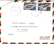 CAMEROUN  - COVER  ABONG MBANG POUR BRIOUDE 19.11.69 - SOLEA - ASTACUS FLUVIATILIS - Marine Life
