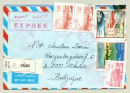 Algerie - 1993 - 6 Stamps On R-Express Cover From Hassi Bahbah To Schilde / België - Algerije (1962-...)