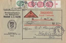 DR Dienst-NN-Brief Mif Minr.D115, 3x D117 Neustadt A. D. Haardt 27.3.31 Gel. Nach Hassloch - Dienstpost