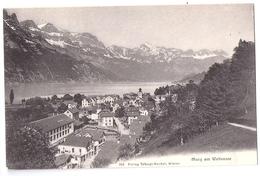 MURG: Ansicht Von Trümpi-Knobel ~1910 - SG St. Gall