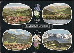 Germany Immenstadt 1964 / Gruss Aus Immenstadt Mit Alpsee Im Algau / Flowers - Immenstadt