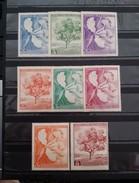 Paraguay, 1965,  Mi: 1447/54 (MNH - Planten