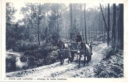 40 - DANS LES LANDES - 2 - Attelage De Mules Dans Les Landes - Photo E. Dignes - Castets - Unclassified