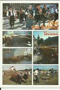 Les Fetes De Besse- 63   Fete Des Estives (  ) Multivues - Besse Et Saint Anastaise
