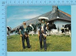 Gruyère - Les Armaillis à L'alpace - 2 Scans - FR Fribourg