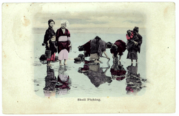 Asian People Picking Shells In The Sea - Cartes Postales