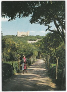 Verdala Palace And Bosketto Gardens, Rabat - (Malta) - Malta