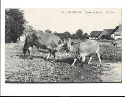 En Creuse - Combat De Boeufs - édit. ND Neurdein 40 + Verso - Other Municipalities