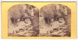 Stéréo 064, Allemagne Le Hartz Ou Harz, Chaine De Montagnes De L'Allemagne - Fotos Estereoscópicas