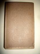 Wild Animals 1854 - Wildlife