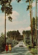 Road To The Lake Sharash - Car Volga - Sverdlovsk - Yekaterinburg - 1965 - Russia USSR - Unused - Rusia