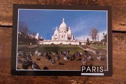 75, PARIS, SACRE COEUR AVEC PIGEONS - Sacré Coeur