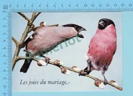 Humour Comic - Les Joies Du Mariage, Oiseaux - 2 Scans - Oiseaux
