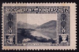 Austria KuK - Zell Am See Kitzsteinhorn - Reichsverein Für Kinderschutz Children Charity LABEL CINDERELLA VIGNETTE - Oostenrijk