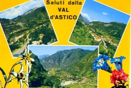 Saluti Dalla Val D'astico - Vicenza - 345 - Formato Grande Non Viaggiata - E - Vicenza
