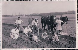 Scènes De La Campagne, Attelage De Chevaux à La Houe, Plantage Des Pommes De Terre ? (1934) - Cultures