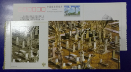 Harbin Jewish Cemetery Built In 1903,China 2003 Harbin Jewish Historical Relic Building Pre-stamped Card - Guidaismo