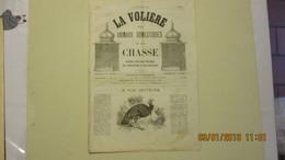 Numéro 1 De La Volière, Les Animaux Domestiques Et La Chasse / 15 Janvier 1881 - Livres, BD, Revues