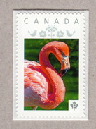 PINK FLAMINGO Personalized Postage Stamp MNH Canada 2017 [p17-01bd64]