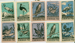MATCHBOX LABELS RUSSIA CCCP URSS 1960's BIRDS OF RUSSIAN FOREST - Old Paper