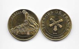 Médaille Alésia Trésors De France   édition 2008 ARTHUS BERTRAND /33NAT - Arthus Bertrand