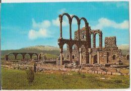 LEBANON - ANJAR - THE BYZANTINE & OMMEYAD RUINS - EDIT JACK P. DADIAN  ( 62 ) - Cartes Postales