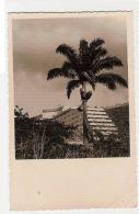 CARACAS -  HOTEL TAMANACO - RPPC POSTCARD - STAMPS - 1950s ( 373 ) - Cartes Postales