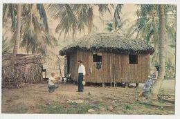 PUERTO RICO - A BAHIO IN THE COCUNUT GROVE - 1960s/70s  (110 ) - Cartes Postales