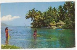 TAHITI - LA PECHE AU FILET A AUAE - PHOTO CINEMA - 1960s ( 60 ) - Cartes Postales