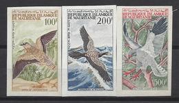 Mauritanie N° 34 à 36 ** Non Dentelé, Poste Aérienne, Oiseaux - Mauritania (1960-...)