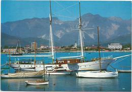 T1983 Marina Di Carrara - Porto - Barche Boats Bateaux Yacht / Non Viaggiata - Carrara