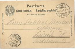 PK 26  Wengen - Zürich Wipkingen            1904 - Ganzsachen